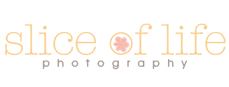 Markham, Toronto Photography – Slice of Life logo